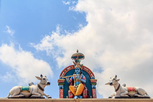 Krishna  Myter  Hindu  COLOURBOX10683658